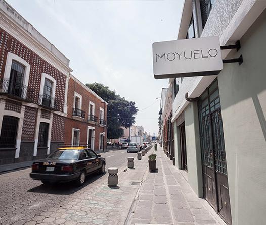 MOYUELO