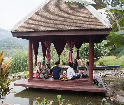 meditación-y-naturaleza