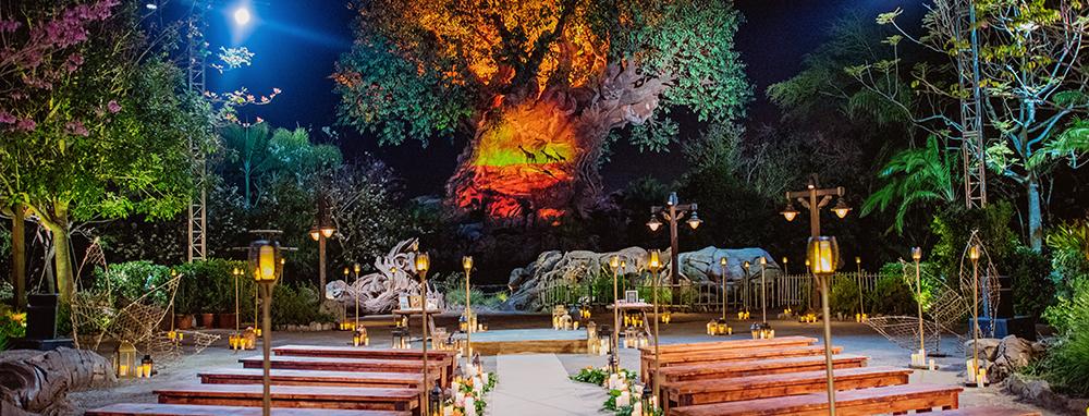 Haz de tu boda un cuento de hadas en una de estas atracciones de Disney World